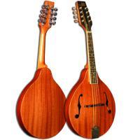 Morgan Monroe MAM-100 A Style Mandolin