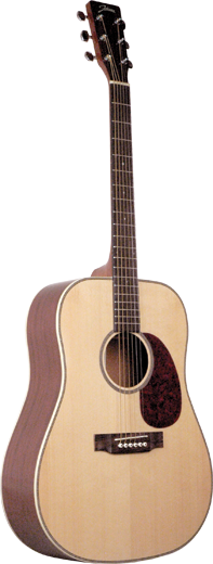 Johnson JD-06 Songwriter Series Guitar