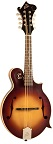 The Loar LM-590-MS Contemporary F-Style Mandolin - Bluegrass Instruments