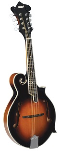 Morgan Monroe MM-100FM F-Style Mandolin