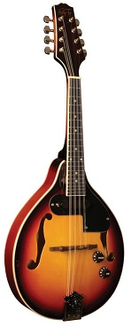 Morgan Monroe RT-M1E Mandolin