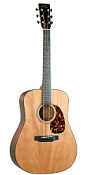 Recording King RD-T16 Torrefied Adirondack Spruce Top Dreadnought - Bluegrass Instruments