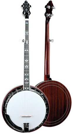 Recording King Professional Banjo RK-R80 >> Recording King Bluegrass