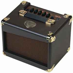 Dean Acoustic Amplifier