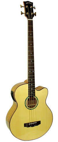 Gold Tone Acoustic Bass Guitar